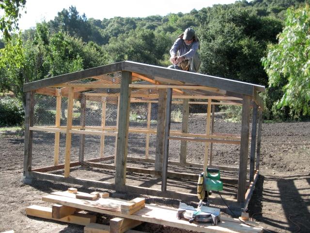 Step 10: Roof.