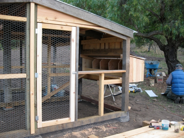 Step 11: Nest boxes and doors.